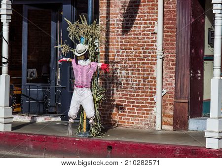 Holiday Scarecrow Displayed On Small Town Street