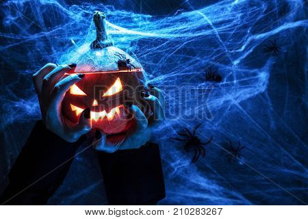 Halloween pumpkin grinning face top view and holding hands background Spiderweb and spider top view mystery and ghastlycopy space