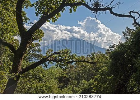 Tropical landscape with volcano in background Guatemala