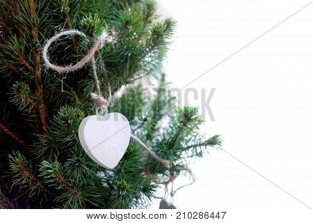 White heart from the branch of a Christmas tree , isolated on a white background, free copyspace.