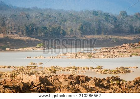 Beautiful Panna river and rocky riverbed at Panna National Park Madhya Pradesh India. It is located in Panna and Chhatarpur districts of Madhya Pradesh in India. It has an area of 542.67 km2 a tiger reserve.