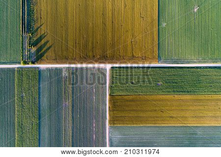 Top View Of Agricultural Parcels