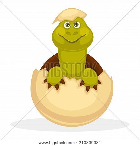 Cute plump turtle that smiles and just hatched from egg with piece of shell on head isolated cartoon flat vector illustration on white background. Adorable baby animal from family of amphibians.