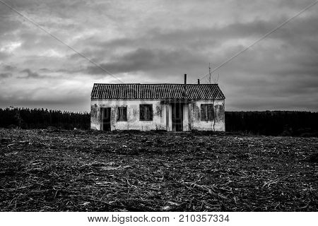 An abandoned house in a devastated area because of deforestation