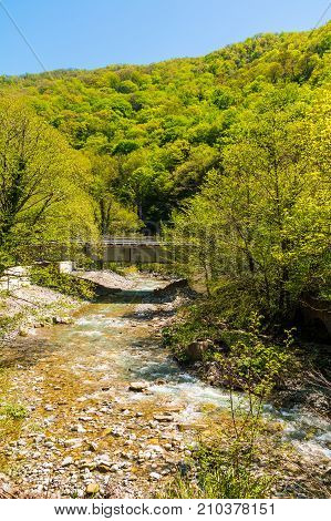 Kuapse river with bridge on the background of mountain with thicket in sunny day Sochi Russia