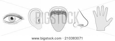 Five senses - sight, hearing, taste, smell and touch - schematic isolated vector icon illustration set of eye, ear, tongue, nose and hand on white background.