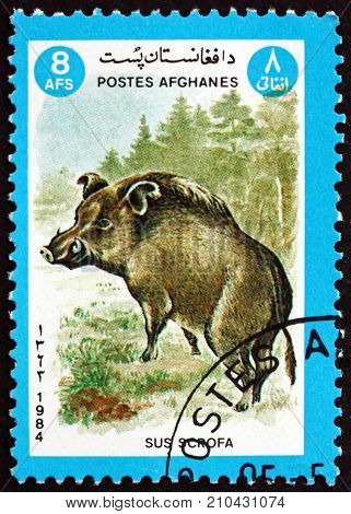 AFGHANISTAN - CIRCA 1984: a stamp printed in Afghanistan shows wild boar sus scrofa is a suid native to much of Eurasia and Nurth Africa circa 1984