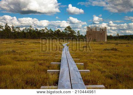Tourist Pathway In Nigula Reserve