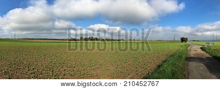 Panoramic view on a rural agriculture landscape