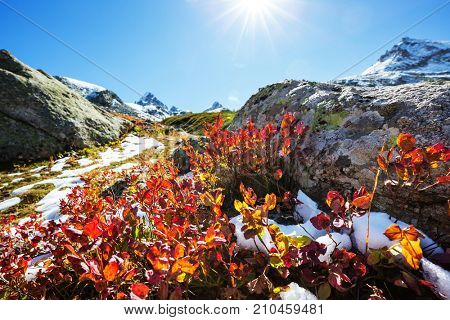 Autumn season in  Kackar Mountains in the Black Sea region of Turkey. Beautiful mountains landscape.