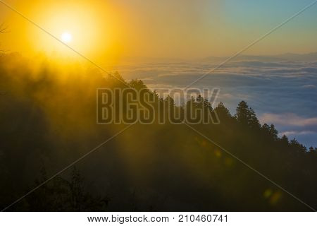 Smoky Mountain sunrise rays through tree shadow silhouettes in the misty mountaintop fog above the clouds