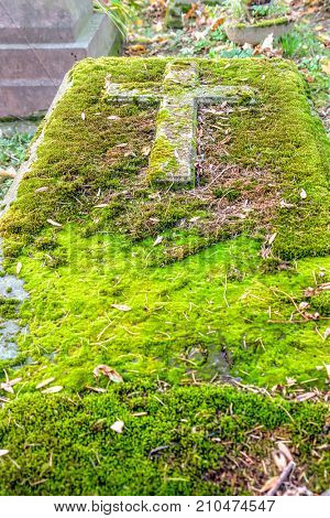 Old forgotten tombstone covered with moss