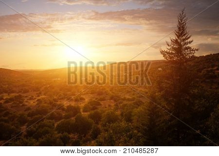 View of rural countryside at sunset light