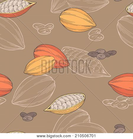 Cocoa bean graphic color sketch seamless pattern illustration vector