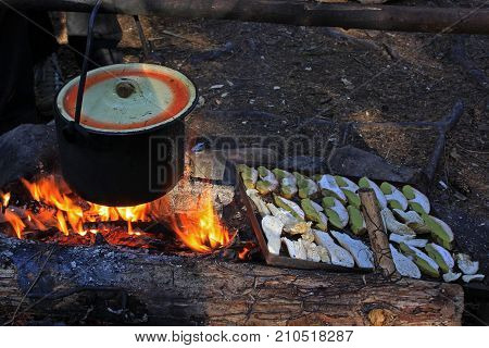 Boiling water is cooked in the old metal saucepan. On the embers dry the white mushrooms. Selective focus