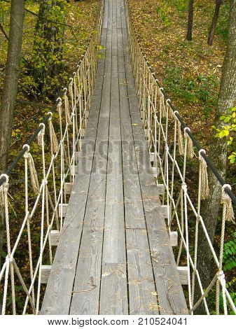 Suspension bridge in the forest. Very beautiful image.