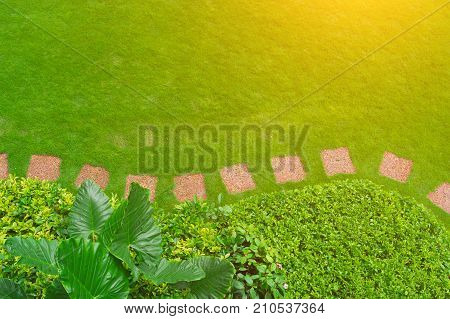 Sunny morning walk in the park with a view on the freshly cut lawn. Landscaped garden path in garden.pathway. Arched walkway in the park on a green lawn and flower garden.