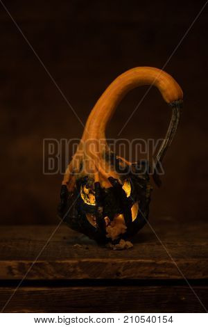 Rotten mutant jack o lantern made from winged gourd pumpkin, which has spikes and wings. Evil looking and spewing rotten pumpkin. black color on bottom half is its natural color.