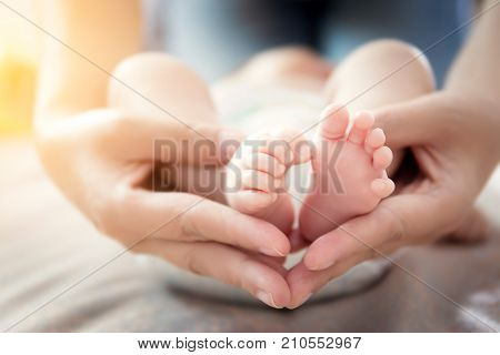 Happy relationship in family concept : Newborn baby feet in mother hands. Parent holding tiny feet of newborn baby in the hands with gentle care soft focus.