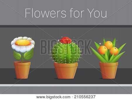 Greeting grateful invitation card template, illustration of magic flowers and plants in pots, florishing cactus, magic daisy, fruit berry plant.
