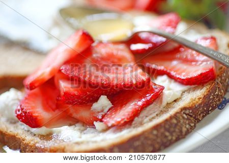 Sliced strawberries with cream cheese on whole wheat bread with honey