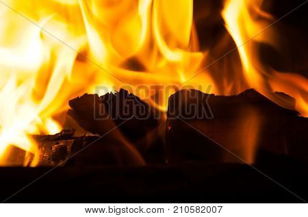 Burning woods with orange and yellow flame in the stove close up