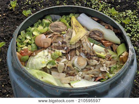 Kitchen Waste