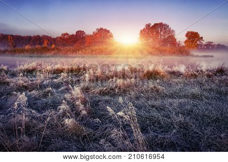 Morning autumn landscape on frosty meadow at sunrise. Hoarfrost on the grass