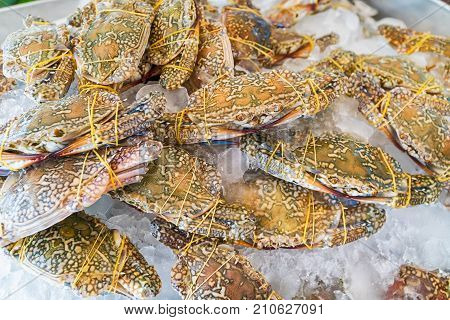 Horse Crab, Blue Crab, Flower Crab On Ice In Food Market
