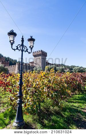 NAPA VALLEY CALIFORNIA - November 8 2016 : Castello di Amorosa's turret rising above large olive trees and fall grape vine leaves with a old style lamp post in the foreground on November 8 2016 in Napa Valley California.