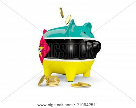 Fat Piggy Bank With Fag Of Mozambique