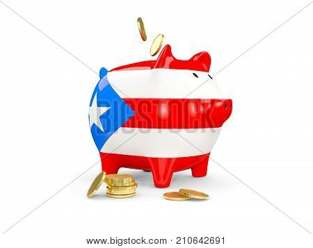 Fat Piggy Bank With Fag Of Puerto Rico