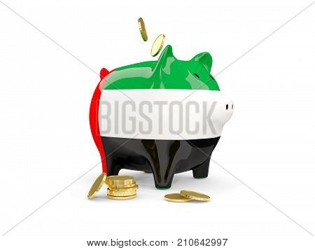 Fat Piggy Bank With Fag Of United Arab Emirates