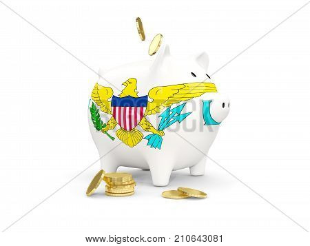 Fat Piggy Bank With Fag Of Virgin Islands Us