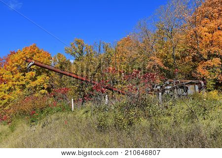 An old rusty tube grain elevator and threshing machine are left in an autumn colored grove.