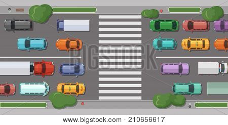 Vector road with cars in front of pedestrian zone with trees and grass on sidelines top view illustration