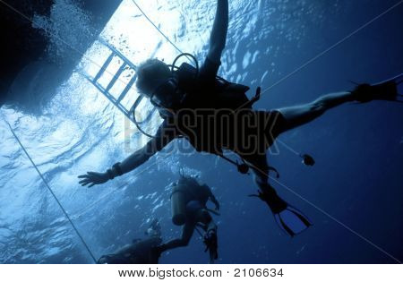 Diver Freefall