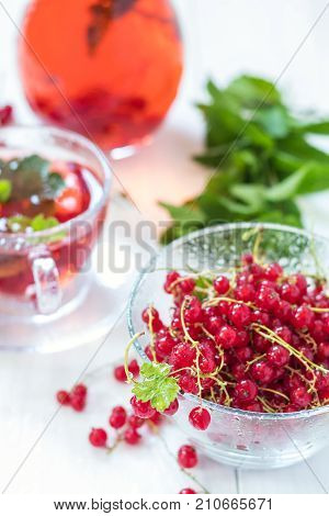 Fresh Redcurrant With Dew Drops In Transparent Glass Vase