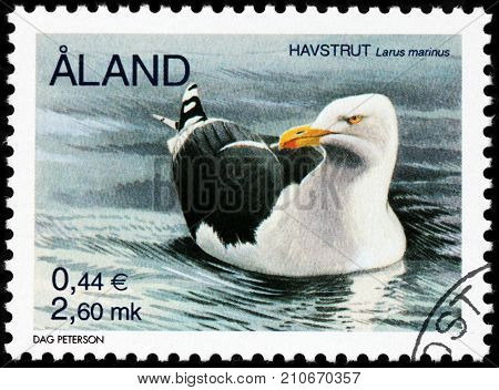LUGA RUSSIA - AUGUST 20 2017: A stamp printed by ALAND ISLANDS shows Great Black-backed Gull (Larus marinus) - the largest member of the gull family circa 2000