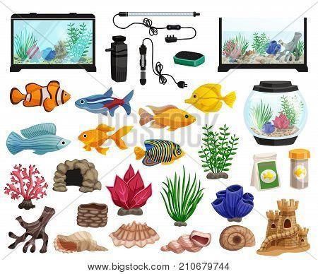 Aquaristics cartoon set with aquarium fishes corals stones seaweeds seashells and aquarium tanks of different shapes vector illustration