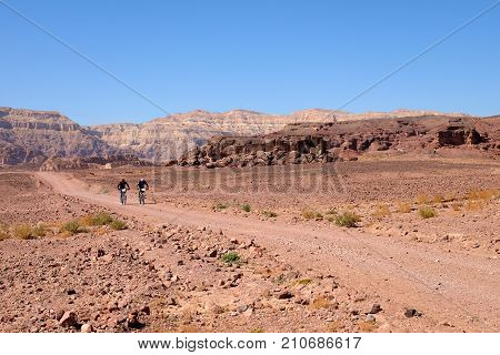 Two unrecognized mountain bikers cycling in the desert Timna National park in Israel.