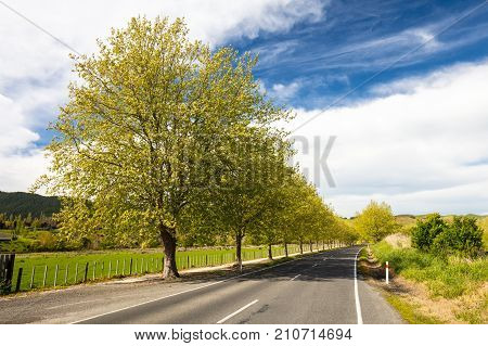 Waimarama Rd near Craggy Range vineyard on a clear spring day in Hawkes Bay, New Zealand.