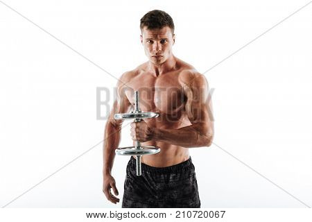 Close-up portrait of serious sweaty athletic man lifting dumbbell, looking at camera, isolated on white background