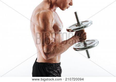 Cropped photo of sweaty bodybuilder lifting dumbbell, isolated on white background