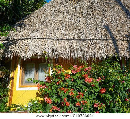Holbox Island colorful Caribbean palapa hut in Quintana Roo of Mexico