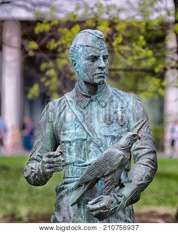 A monument to an unknown soldier. Sculpture. Second World War. A hawk is sitting on a soldier's hand. Spring, May. The concept of memory, faith, love, peace throughout the world.