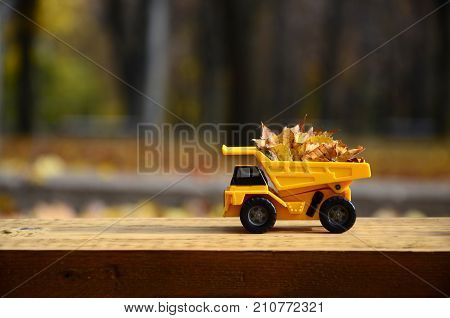 The Concept Of Seasonal Harvesting Of Autumn Fallen Leaves Is Depicted In The Form Of A Toy Yellow T