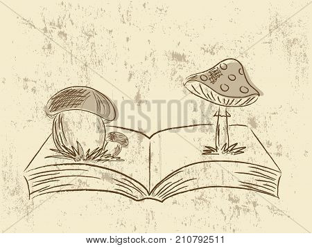 Abstract hand drawn illustration with book and mushrooms