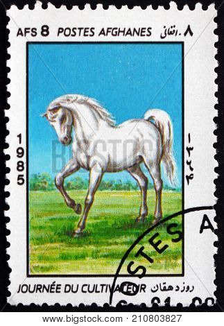 AFGHANISTAN - CIRCA 1985: a stamp printed in Afghanistan shows white horse, farmers day, circa 1985