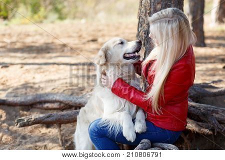 Cute pretty doggie having fun with owner in the forest. Dog and owner walking on the nature blurred background. Close-up of dog and owner. Animal concept.